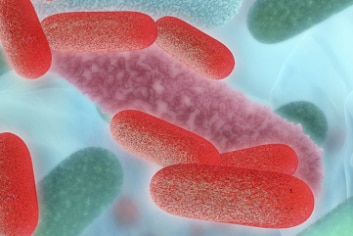 Learning module on microbiome